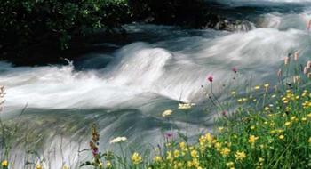 Energia idroelettrica: un ruolo importante nel mix energetico